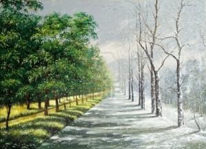 8737574-inverno-ed-estate-contrasto
