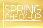 spring checkup MINI